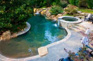 Pools spas landscaping companies knoxville patio for Pool design knoxville tn